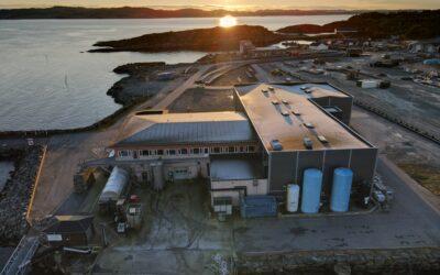 Nytt lakseslakteri i Langevåg på Bømlo